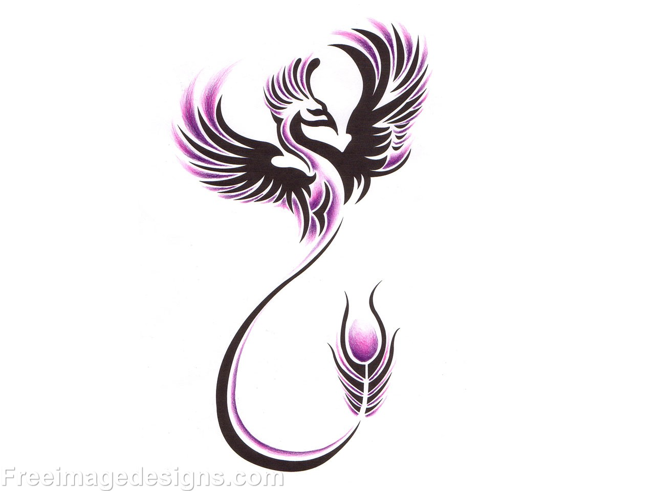 phoenix bird image design download free image tattoo designs freeimagedesigns com. Black Bedroom Furniture Sets. Home Design Ideas
